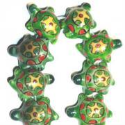 Turtle20-300